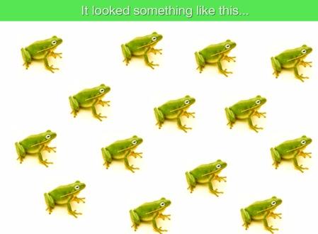 FrogMaze